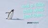 penguin_banner